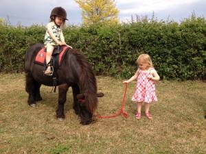 pony prog
